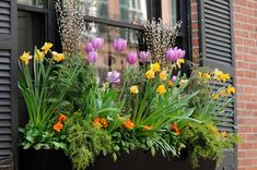 Spruce up your windows from the outside with window boxes. Paint the boxes a bright inviting color.