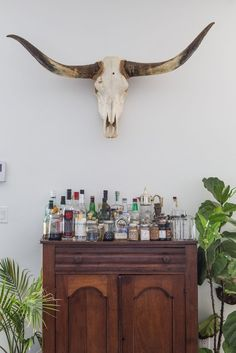 House Tour: A Beautifully Salvaged New Orleans Home | Apartment Therapy