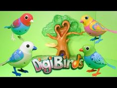 DIGIBIRDS Digital Singing Birds TheEngineeringFamily Digibird YouTube Video Toy Review - YouTube