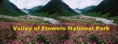 Uttarakhand posts: Valley of Flowers