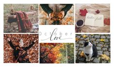 """October love"" by heartandsoul ❤ liked on Polyvore featuring art"