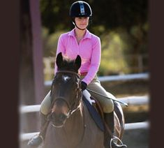 Tips on working with your green horse
