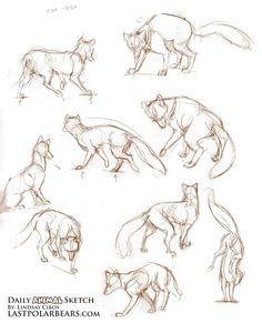 Image result for human and pet drawing poses