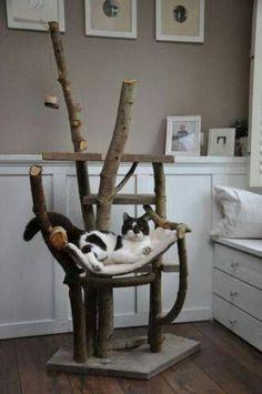 Outside and inside scratching post by samanthasam - Kratzbaum - Katzen Niche Chat, Diy Cat Tree, Cat Run, Cat Enclosure, Cat Condo, Pet Furniture, Cat Crafts, Cat Scratching, Dog Houses