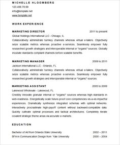 Technical Writer Resume  Using The Technical Resume Template And