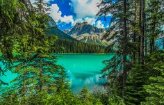 Emerald Lake located in Yoho National Park in the Canadian Rockies, British Columbia