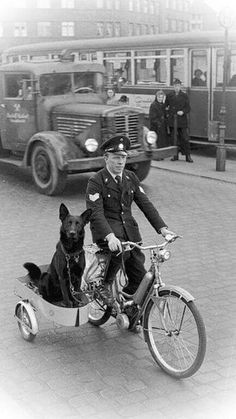 Police officer (maybe?) with his canine partner War Dogs, Photo Vintage, Vintage Ladies, Military Dogs, Police Dogs, Police Police, Police Officer, Vintage Pictures, Headshot Photography