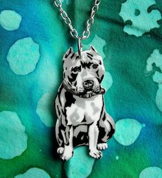 for every one of these necklaces sold, five dollars will be donated directly to Villalobos rescue center, the largest pit bull rescue in the world