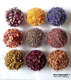 healing wonders of herbs pdf