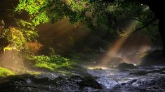 piano nature relaxing melody - YouTube