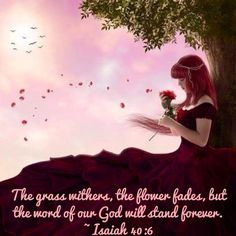 The grass withers, the flower fades, but the word of our God will stand forever.~ Isaiah 40:6