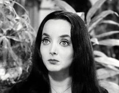 I'm a sucker for women with big eyes! 💗 - The glorious Carolyn Jones (aka Morticia Addams) The Addams Family 1964, Die Addams Family, Adams Family, Family Tv, Family Photos, Morticia Addams, Gomez And Morticia, Carolyn Jones, The New Yorker