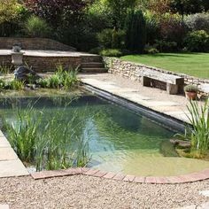 It wouldn't be summer without a trip to the pool—but those harsh chemicals can be a real turnoff. These days, eco-conscious and design-savvy homeowners are increasingly adopting an unorthodox means of pool filtration: plant life. Aquatic plants and natura