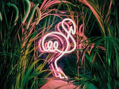 Download the catalogue and request prices of Pink flamingo By sygns, table neon light installation
