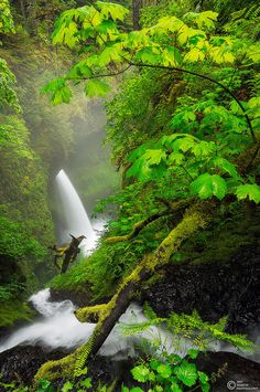 Columbia River Gorge, Portland, Oregon.