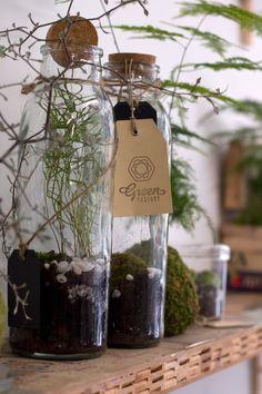 Best Paris plant and flower shops Green Factory