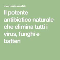 Il potente antibiotico naturale che elimina tutti i virus, funghi e batteri