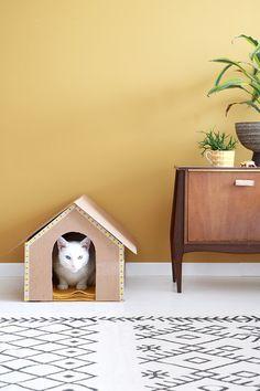 DIY kattenhuis