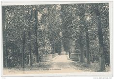 TRIZAY LES BONNEVAL  Avenue De Prémotteux