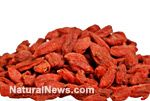 Five easy ways to add goji berries (Wolfberries) to your diet for enhanced nutrition, trace minerals and longevity