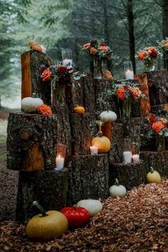 Rustic fall wedding with pumpkins: Kalina Matthew fall wedding styles / rustic october wedding / fall wedding stuff / fall wedding autumn / wedding ideas fall november Wedding Decorations On A Budget, Budget Wedding, Wedding Themes, Wedding Events, Wedding Planning, Wedding Tips, Autumn Wedding Ideas On A Budget, Wedding Favors, Wedding Table
