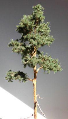 Bäume basteln leicht gemacht - Seite 14 - Anlagenbau 2: Ausgestaltung - Spur Null Magazin Forum