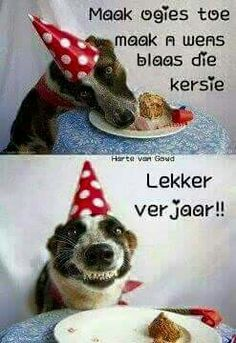Lekker verjaar!! Happy Bday Wishes, Free Happy Birthday Cards, Cute Birthday Wishes, Birthday Blessings, Happy Birthday Pictures, Birthday Songs, Happy Birthday Greetings, Birthday Messages, Birthday Quotes
