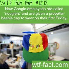 new Google employees are called 'nooglers' and are given a propeller beanie cap to wear on their first Friday.  MORE OF WTF FACTS are coming HERE  awesome and fun factsONLY
