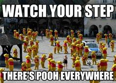 Watch your step, there's pooh everywhere!
