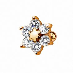 Discover recipes, home ideas, style inspiration and other ideas to try. Tragus Piercings, Tragus Jewelry, Tragus Earrings, Surface Tragus, Dermal Anchor, Accessories, Piercing, Plugs, Schmuck