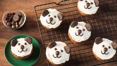 Pandamuffins | Och wie süß - kleine Pandamuffins erobern den Kuchenteller. Entdecke ein tolles Backrezept für bärige Muffins.
