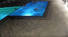 This Bear Sneaks Into A Public Pool Every Night To Take An Evening Swim | CutesyPooh