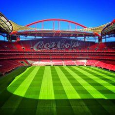 Grande foto do nosso Estádio da Luz