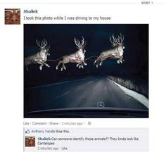 The 21 Dumbest Things Ever Said On The Internet 8
