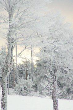 Adoro ambientes com neve!!!