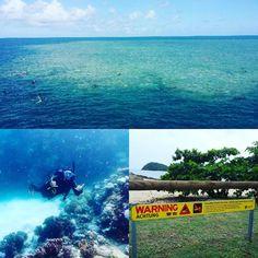 Long weekend recovery sesh on the Great Barrier Reef #weekend #easter #scuba #greatbarrierreef #crocs #bliss #peace #quiet #soulsearching by funcfitness_01 http://ift.tt/1UokkV2