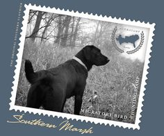Southern Marsh Collection — Southern Marsh Black Lab - Long Sleeve