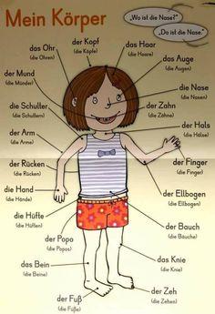 Mein Körper - il mio corpo in tedesco Study German, German English, German Grammar, German Words, Deutsch Language, Germany Language, German Language Learning, Spanish Language, French Language