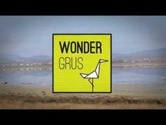 Wondergrus. Un proyecto de turismo 360º. www.wondergrus.com y www.zesis.com