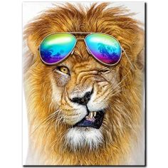 Find More Diamond Painting Cross Stitch Information about 5D DIY diamond Painting full square drill embroidery funny lion Diamond Mosaic Cross Stitch Home Decor Gift A1213,High Quality Diamond Painting Cross Stitch from Alma Store on Aliexpress.com