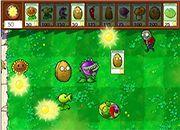 Plants Vs Zombies Flash2015