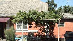 ПРОДАМ дом в Сквире с хорошим участком большей площадью