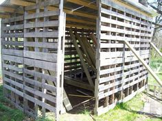 Pallet PalaceChicks love it!Thanks to all at BYC for advice and tips. Also thanks to BYC for the...