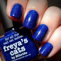 Royal Blue Nails