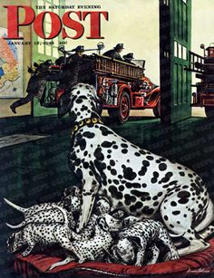 Dalmatian with puppies by Stevan Dohanos, Jan. 13, 1945, The Saturday Evening Post.