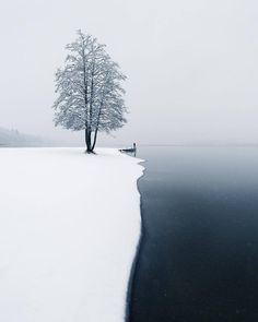 The moment of the first snow ~ Järvenpää, Finland. Photo by @mikkolagerstedt #nature