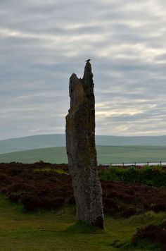 Standing Stone · Ring of Brodgar · Anette B