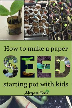 School Gardens, Starting Seeds Indoors, Seed Starting, Grade 2, Fall Recipes, Home And Garden, Classroom, Gardening, Science