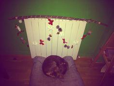 #diy #christmas #dog