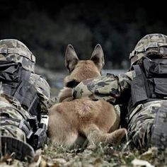 Our soldiers and their four legged companions - defenders of our land!  Thank you!! - MilitaryAvenue.com